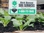 Black Diamond Soil Services